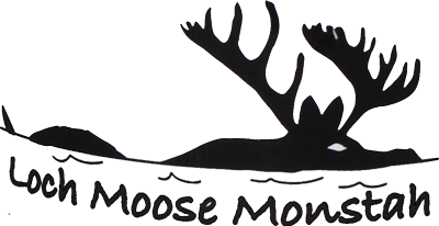Maine Moose T-Shirts, Maine Photography